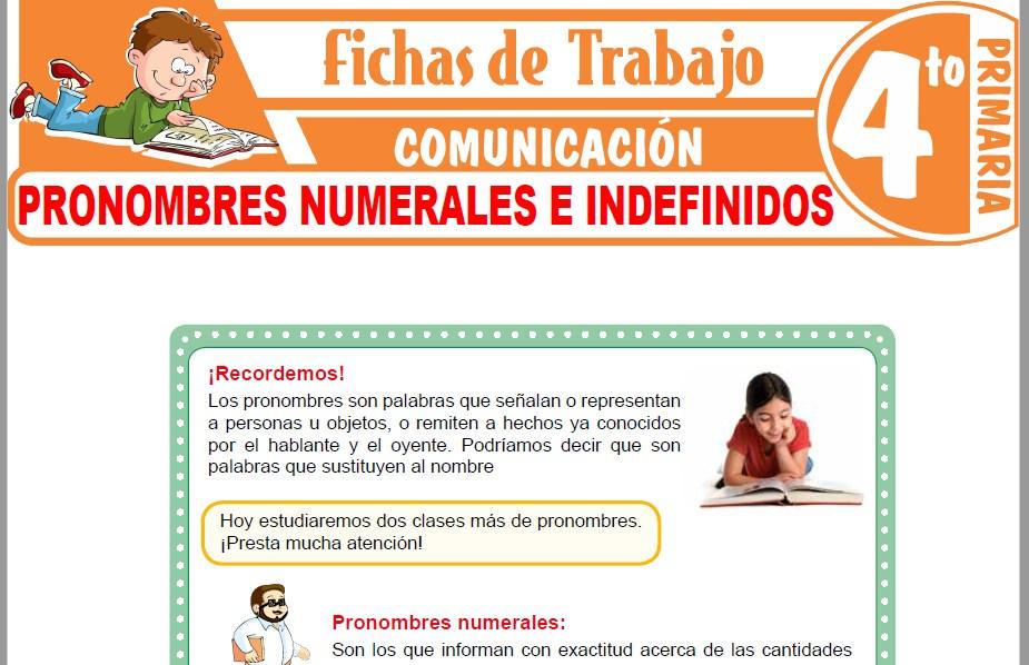 Modelos de la Ficha de Pronombres numerales e indefinidos para Cuarto de Primaria