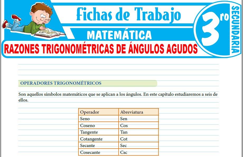 Modelos de la Ficha de Razones trigonométricas de ángulos agudos para Tercero de Secundaria