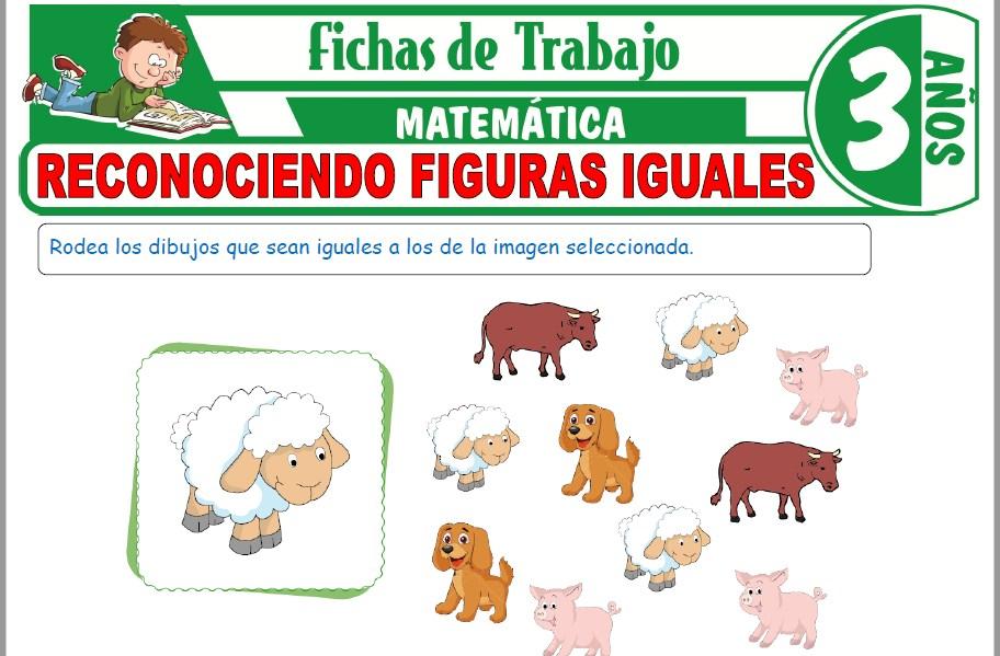 Modelos de la Ficha de Reconociendo figuras iguales para Niños de Tres Años