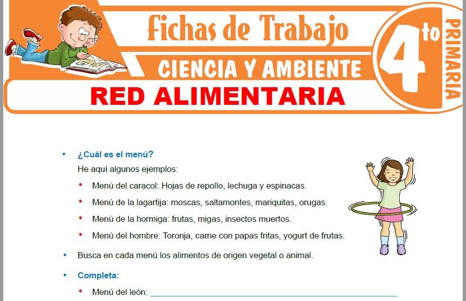 Modelos de la Ficha de Red alimentaria para Cuarto de Primaria