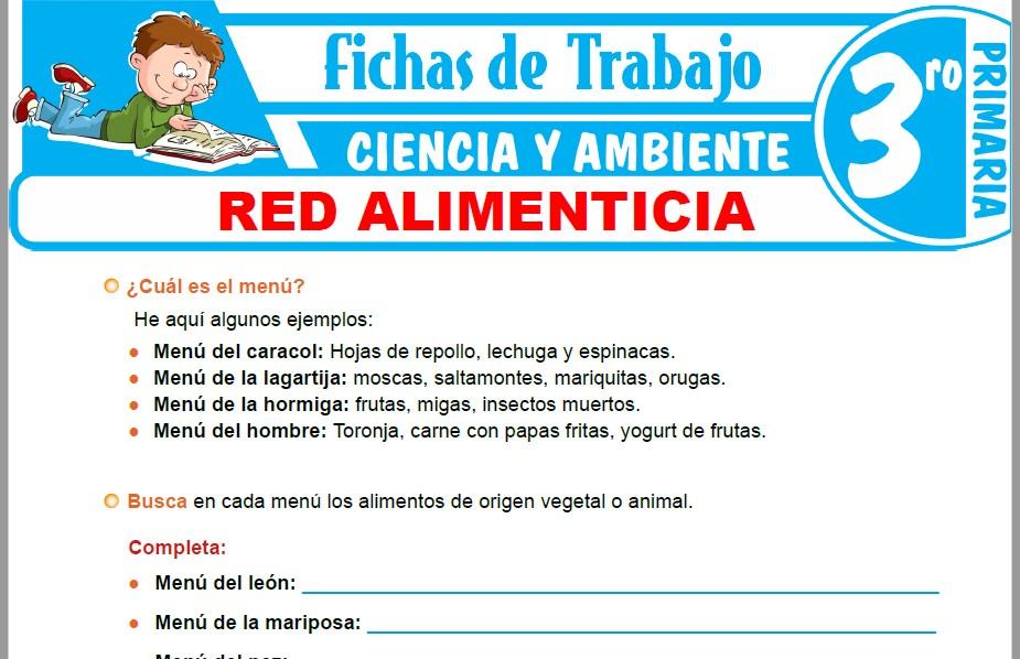 Modelos de la Ficha de Red alimenticia para Tercero de Primaria