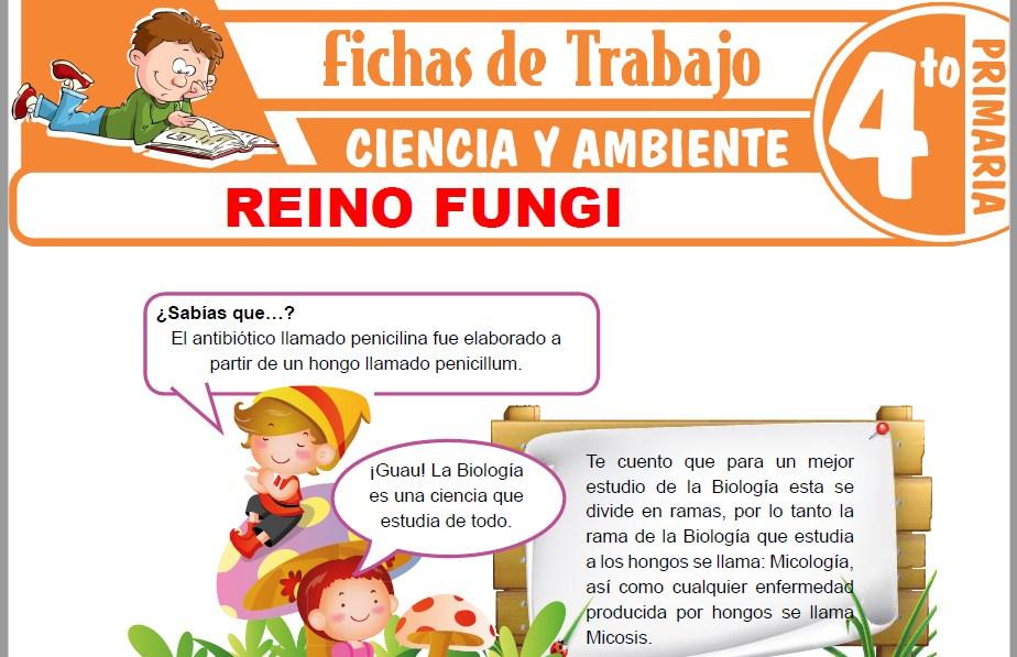Modelos de la Ficha de Reino Fungi para Cuarto de Primaria