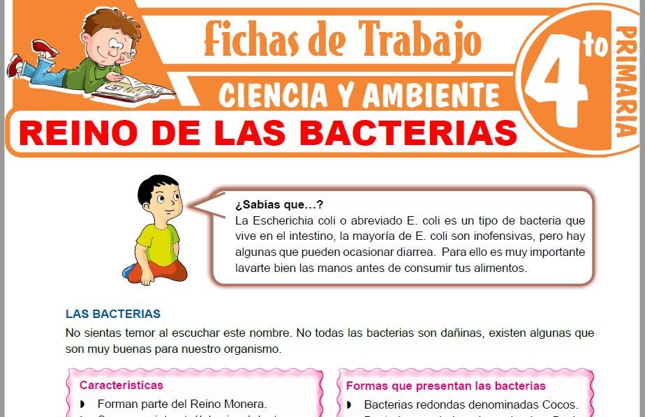 Modelos de la Ficha de Reino de las bacterias para Cuarto de Primaria