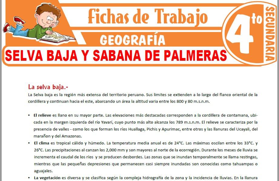 Modelos de la Ficha de Selva Baja y sabana de Palmeras para Cuarto de Secundaria