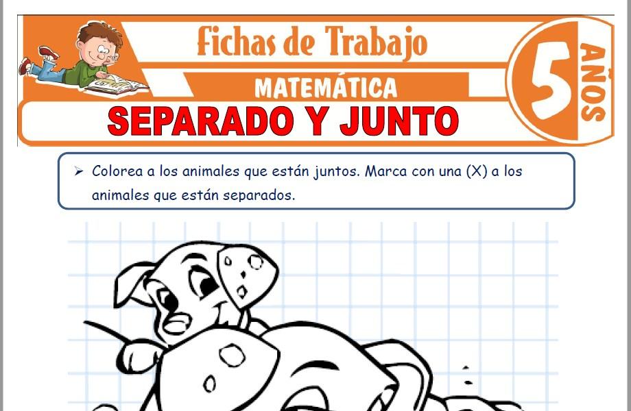 Modelos de la Ficha de Separado y junto para Niños de Cinco Años