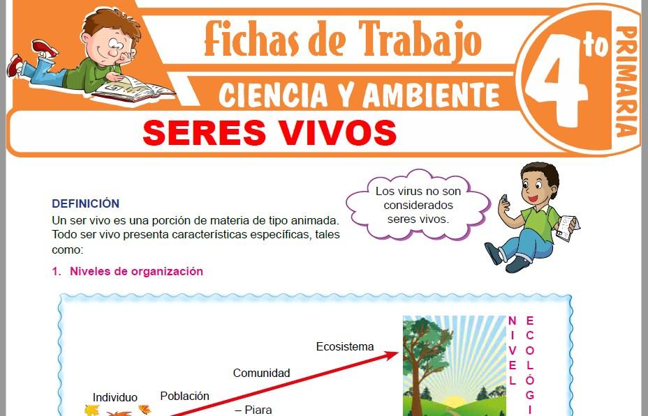 Modelos de la Ficha de Seres vivos para Cuarto de Primaria