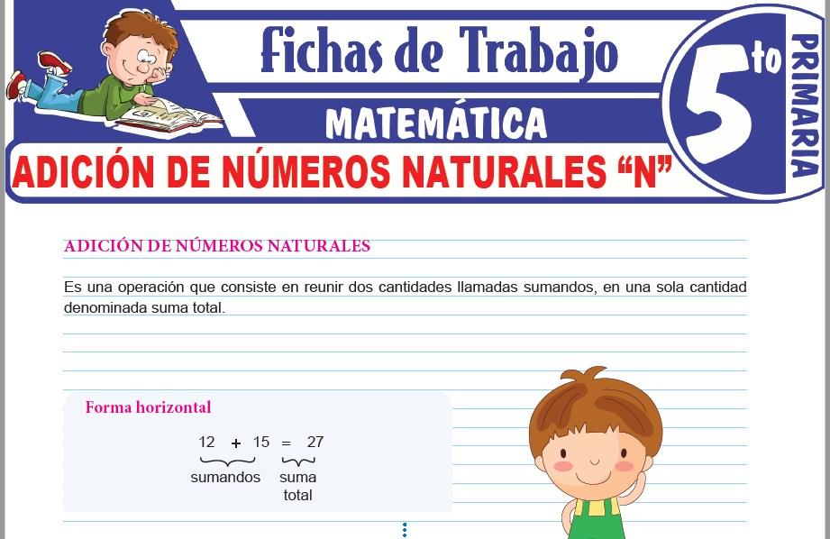 Modelos de la Ficha de Suma de números naturales N para Quinto de Primaria