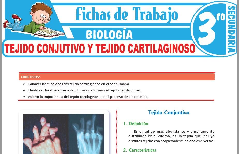Modelos de la Ficha de Tejido conjutivo y tejido cartilaginoso para Tercero de Secundaria