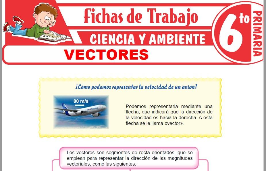 Modelos de la Ficha de Vectores para Sexto de Primaria
